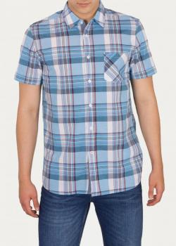 Mustang® Collin Basic Check - Basic Check